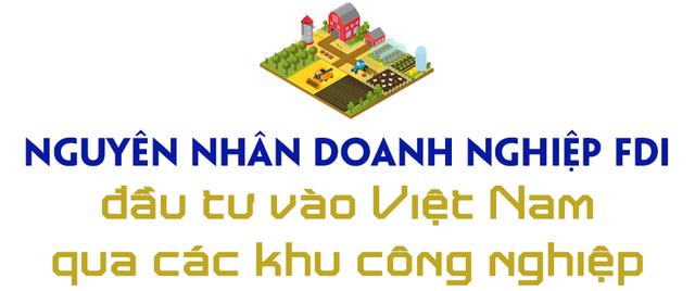 Nguyên Chủ tịch EuroCham giải mã hiện tượng doanh nghiệp ngoại đầu tư vào Việt Nam thông qua khu công nghiệp - Ảnh 5.