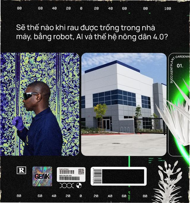 Sẽ thế nào khi rau được trồng trong nhà máy, bằng robot, AI và thế hệ nông dân 4.0? - Ảnh 2.