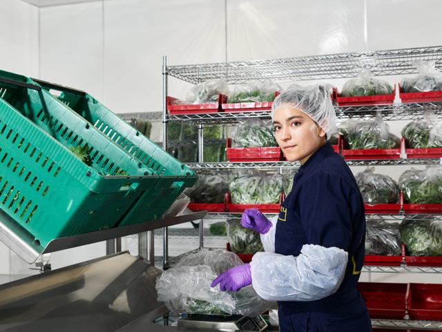 Sẽ thế nào khi rau được trồng trong nhà máy, bằng robot, AI và thế hệ nông dân 4.0? - Ảnh 11.