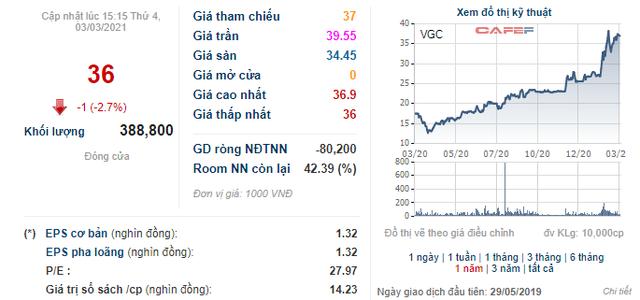 Gelex thông qua phương án mua thêm cổ phiếu VGC, tiến tới mục tiêu chi phối Viglacera - Ảnh 1.