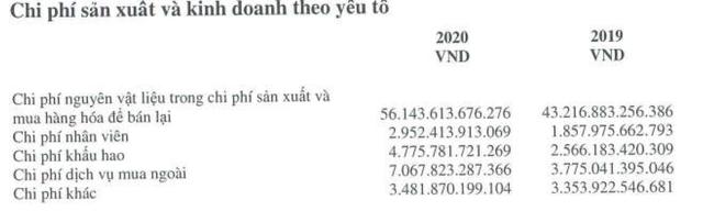 Không đâu như ở Hoà Phát: Công ty lãi 13.500 tỷ năm 2020, CEO Trần Tuấn Dương còn bị giảm lương, mưa tiền thưởng phải chờ ĐHCĐ - Ảnh 7.