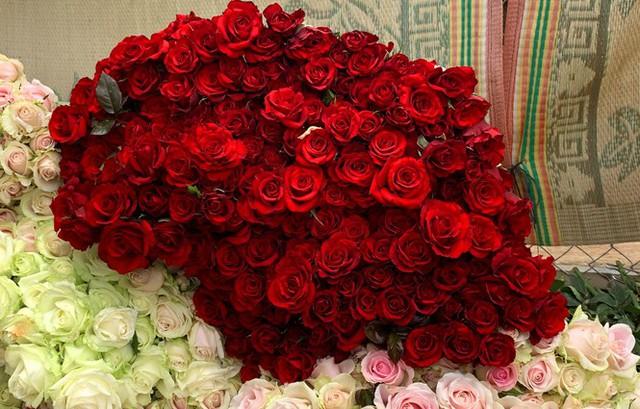 Giá hoa hồng Đà Lạt tăng vọt dịp 8/3 - Ảnh 2.