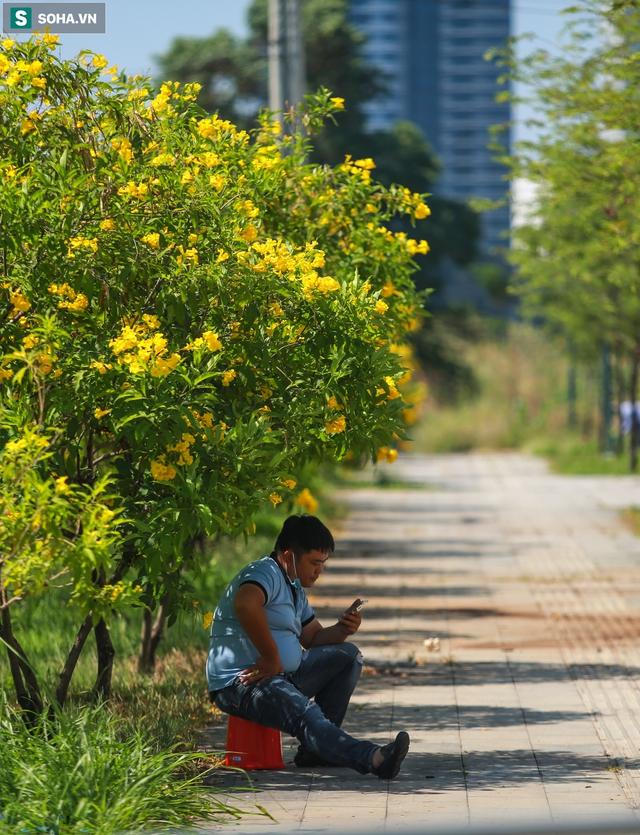 [ẢNH] Đường Sài Gòn nóng như thiêu, người dân vật vã tránh nóng ở góc cây, gầm cầu - Ảnh 13.