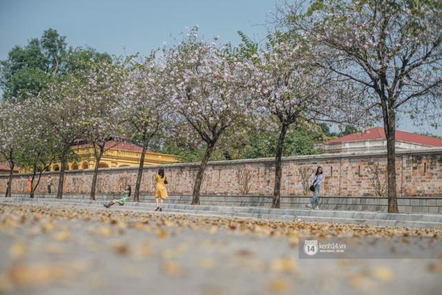 Hà Nội chiều Chủ nhật, dân tình rộn ràng chụp ảnh đông nghịt trên con đường hoa ban tím - Ảnh 1.