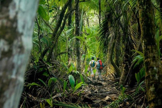7 xu hướng du lịch hứa hẹn phá đảo năm 2021: Những chuyến đi một mình chưa bao giờ hết hot, du lịch nội địa tiếp tục lên ngôi - Ảnh 8.