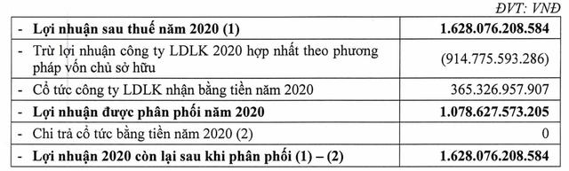 Cơ điện lạnh REE đặt mục tiêu lãi sau thuế 1.769 tỷ đồng năm 2021, không chia cổ tức năm 2020 - Ảnh 4.