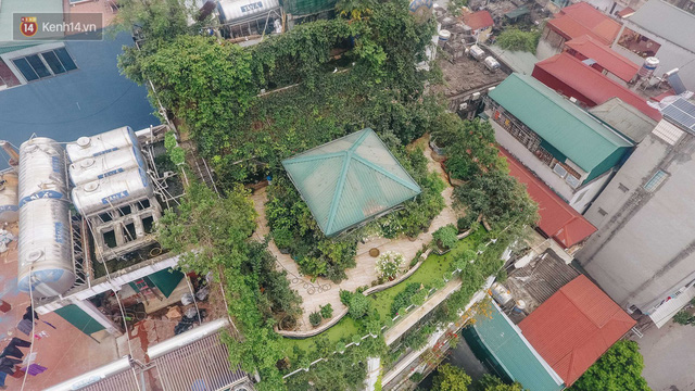 Forest drone on the terrace of the Hanoi woman: 200m2 wide, 1,500 lilies covered - Photo 2.