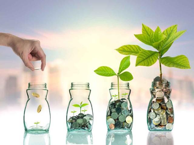 5 bước để đạt được tự do tài chính với mức lương 10 triệu - Ảnh 2.