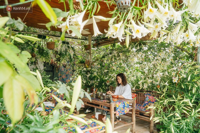 Forest drone on the terrace of the Hanoi woman: 200m2 wide, 1,500 lilies covered - Photo 6.