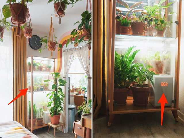 Biến căn hộ 32m2 trở thành không gian sống lý tưởng với nhiều cây xanh: Thay tông màu đen trắng thành nâu và vàng mù tạt  - Ảnh 4.