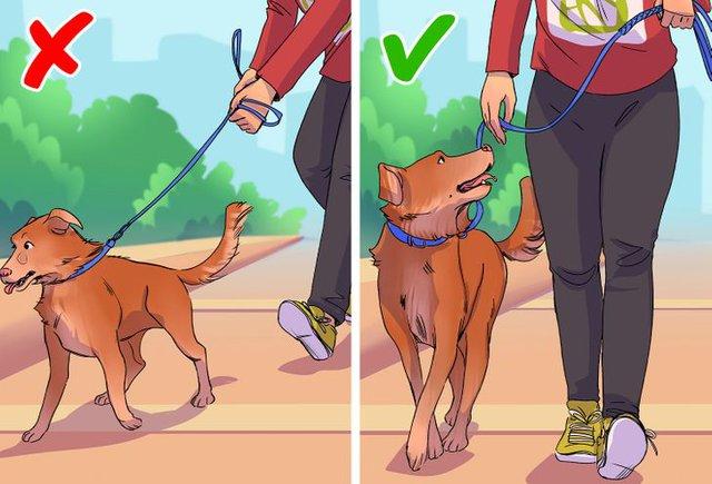 9 thói quen tưởng chừng vô hại khi đi bộ nhưng lại gây ra ảnh hưởng tiêu cực đến sức khỏe: Đặc biệt điều thứ 3 mọi người vẫn làm hàng ngày - Ảnh 1.