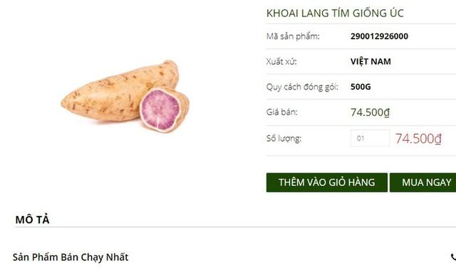 Khuyến mãi sâu, khoai lang tím Úc vẫn có giá 100.000 đồng/kg  - Ảnh 2.