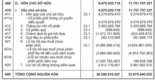 HAGL vẫn tăng kịch trần dù lỗ lũy kế sau kiểm toán tăng thêm hơn 1.200 tỷ đồng - Ảnh 3.