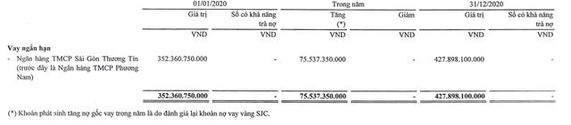 Một công ty lỗ âm vốn chủ 849 tỷ đồng nợ Sacombank hơn 950 tỷ đồng - Ảnh 1.