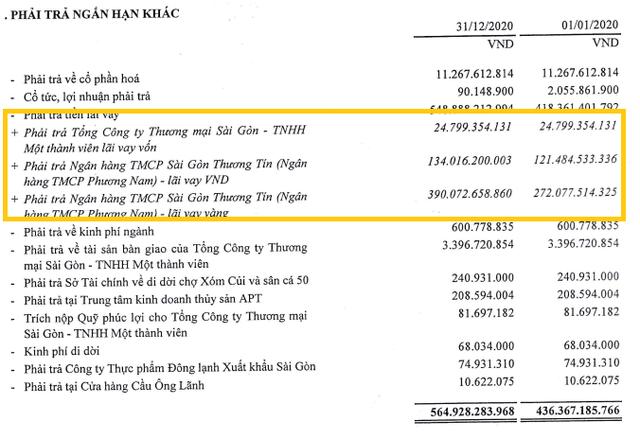 Một công ty lỗ âm vốn chủ 849 tỷ đồng nợ Sacombank hơn 950 tỷ đồng - Ảnh 2.