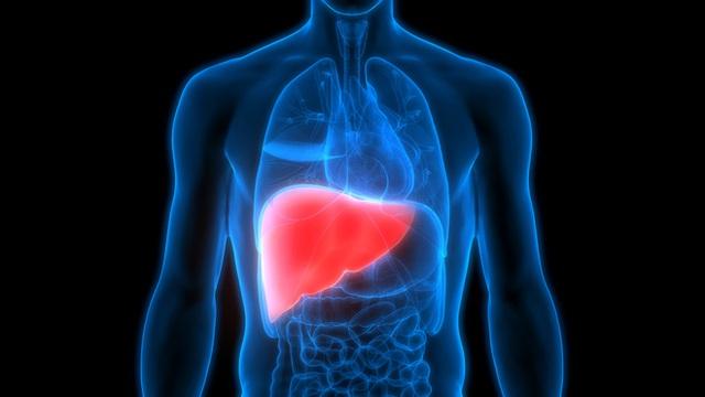 Thải độc gan hay đầu độc gan? Sự thật bất ngờ về thải độc gan bạn cần nắm rõ - Ảnh 1.