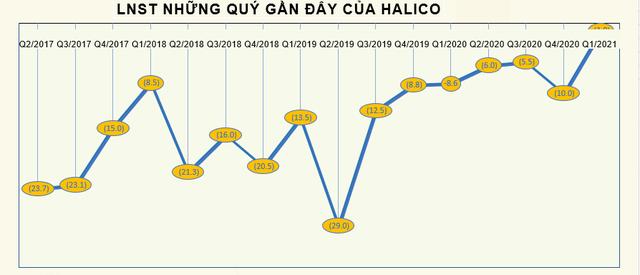 Halico chỉ lỗ hơn 1 tỷ đồng trong quý 1/2021, doanh thu bán rượu tăng đột biến 34% - Ảnh 2.