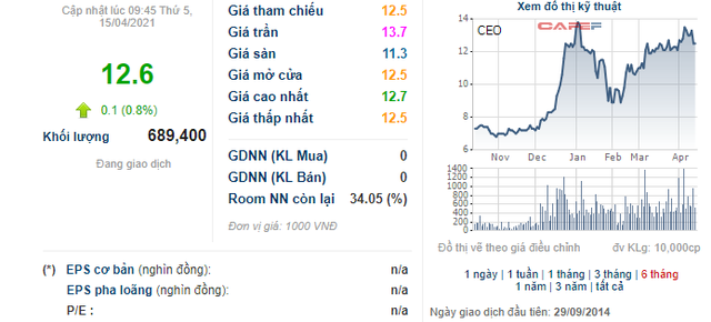 Pyn Elite vừa bán bớt 2 triệu cổ phiếu CEO Group - Ảnh 1.