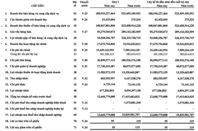 Giảm mạnh chi phí, dịch vụ hàng không Sasco có lãi 13 tỷ đồng trong quý 1 - Ảnh 2.