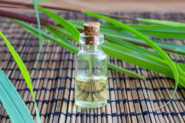 Xông tinh dầu đuổi muỗi liệu có ảnh hưởng đến sức khỏe không, sử dụng thế nào mới đúng cách, dùng lâu dài có được không?  - Ảnh 1.