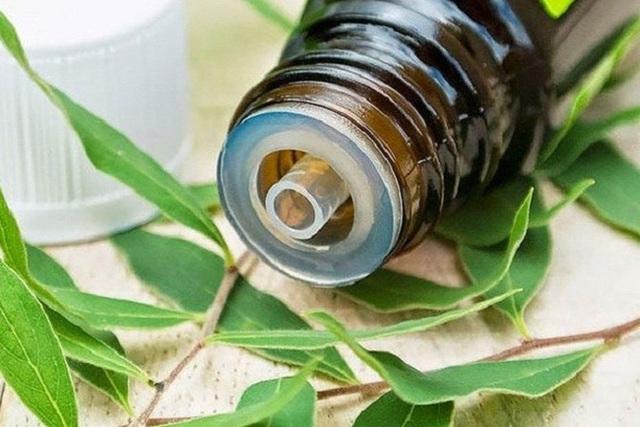 Xông tinh dầu đuổi muỗi liệu có ảnh hưởng đến sức khỏe không, sử dụng thế nào mới đúng cách, dùng lâu dài có được không?  - Ảnh 3.