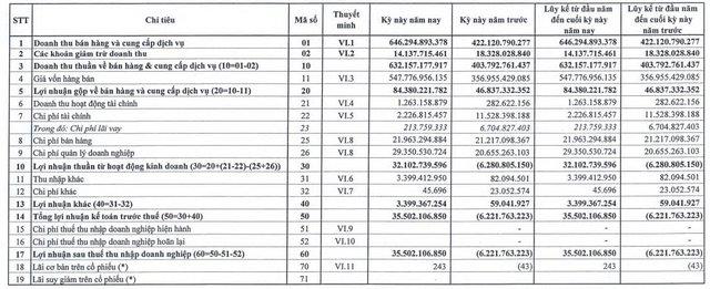 DAP Vinachem (DDV) lãi quý 1 hơn 35 tỷ đồng trong khi cùng kỳ kinh doanh thua lỗ - Ảnh 1.