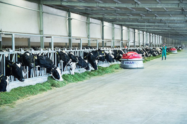 Vinamilk ra mắt hệ thống Trang Trại Sinh Thái Vinamilk Green Farm - Ảnh 4.