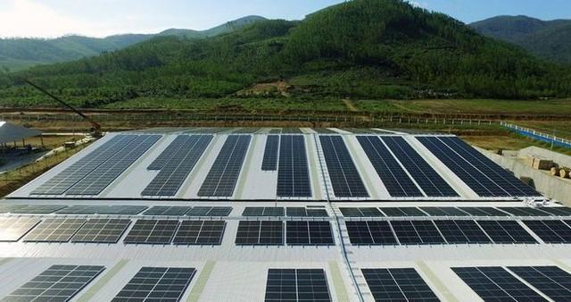 Vinamilk ra mắt hệ thống Trang Trại Sinh Thái Vinamilk Green Farm - Ảnh 5.