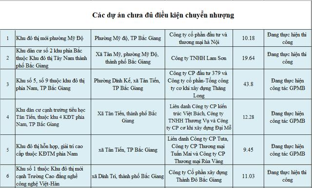 Giữa cơn sốt đất, lộ diện danh sách 28 dự án tại Bắc Giang được cảnh báo chưa đủ điều kiện chuyển nhượng, nhà đầu tư cần cẩn trọng - Ảnh 1.