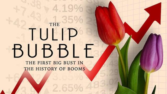 Sốt lan đột biến, giấc mộng ôm lan đổi đời và lời cảnh báo bong bóng tulip gần 400 năm trước - Ảnh 2.