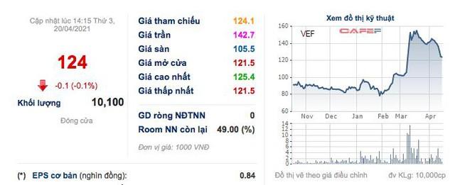 Quý 1, chủ sở hữu Triển lãm Giảng Võ (VEF) báo lãi 53 tỷ đồng cao gấp hơn 4 lần cùng kỳ  - Ảnh 3.
