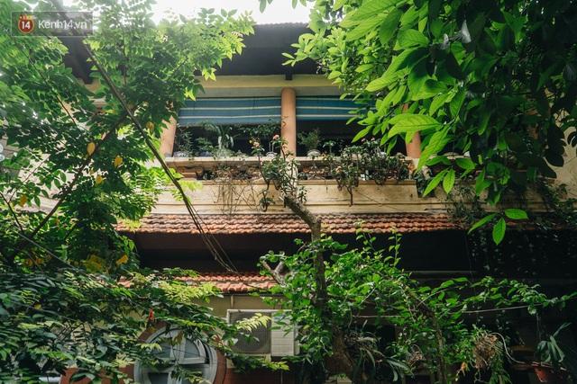 Ngôi nhà 80 năm tuổi, rộng gần 300m2 giữa phố cổ Hà Nội: Trả trăm tỷ không bán, bên trong có hầm chứa được 20 người - Ảnh 4.