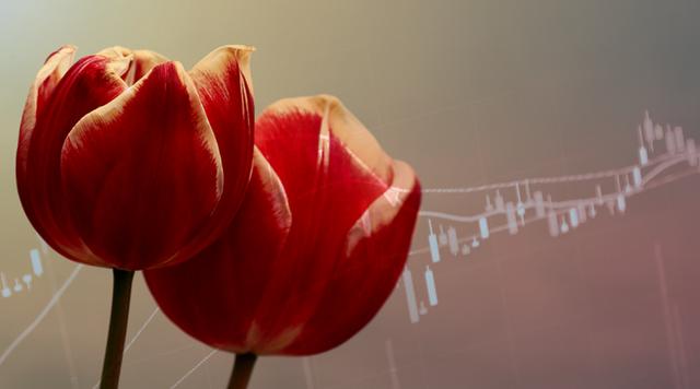 Sốt lan đột biến, giấc mộng ôm lan đổi đời và lời cảnh báo bong bóng tulip gần 400 năm trước - Ảnh 6.