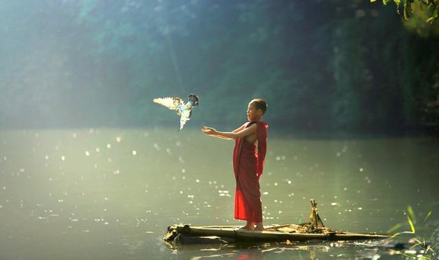 Bề dày thực sự của đời người không giới hạn, tuổi tác, địa vị mà ở 4 thước đo này: Sang hèn, hạnh phúc hay không đều phụ thuộc cả vào đó! - Ảnh 3.