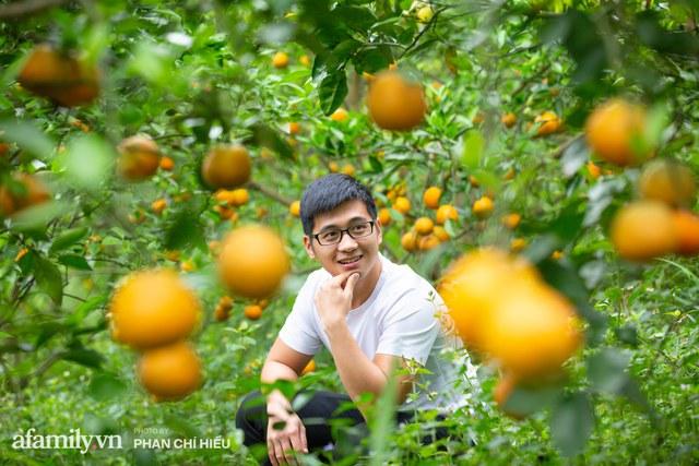 Chàng công tử đất Hà thành bỏ phố lên núi làm chủ 3 quả đồi trồng cam, mỗi năm kiếm cả tỷ bỏ túi nhưng cũng bị vùi dập đến tơi bời - Ảnh 1.