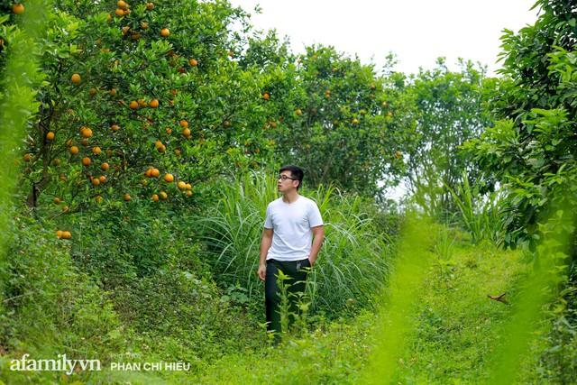 Chàng công tử đất Hà thành bỏ phố lên núi làm chủ 3 quả đồi trồng cam, mỗi năm kiếm cả tỷ bỏ túi nhưng cũng bị vùi dập đến tơi bời - Ảnh 2.