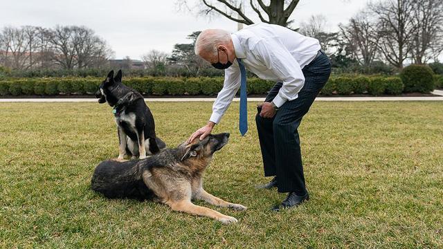 Phát ngôn viên Nhà Trắng tiết lộ về thời gian rảnh rỗi của ông Biden - Ảnh 2.