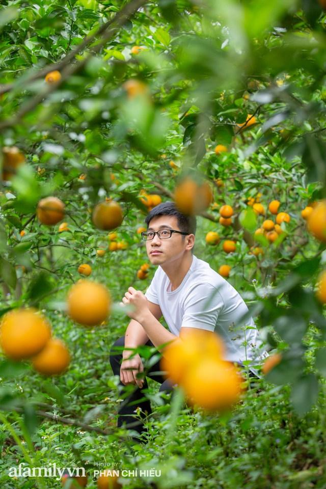 Chàng công tử đất Hà thành bỏ phố lên núi làm chủ 3 quả đồi trồng cam, mỗi năm kiếm cả tỷ bỏ túi nhưng cũng bị vùi dập đến tơi bời - Ảnh 12.