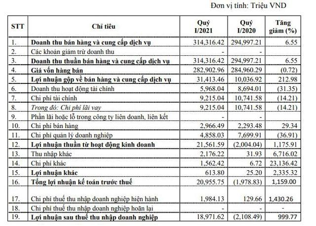 Damsan (ADS): Quý 1 lãi 19 tỷ đồng – cao nhất trong lịch sử niêm yết - Ảnh 1.