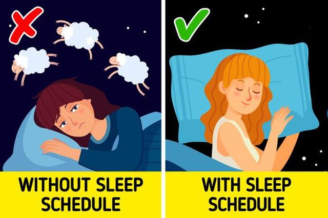 6 bước để tính thời điểm đi ngủ và thức dậy hoàn hảo nhất: Chìa khóa để khỏe mạnh, sống lâu - Ảnh 6.