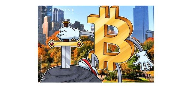 """Bitcoin: Cuộc chơi của những """"cá mập"""" thông minh - Ảnh 3."""