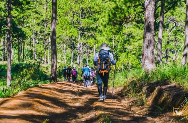 Kỹ năng sinh tồn cần thuộc lòng dù bạn đi du lịch dài ngày hay chỉ camping 1 ngày - Ảnh 17.