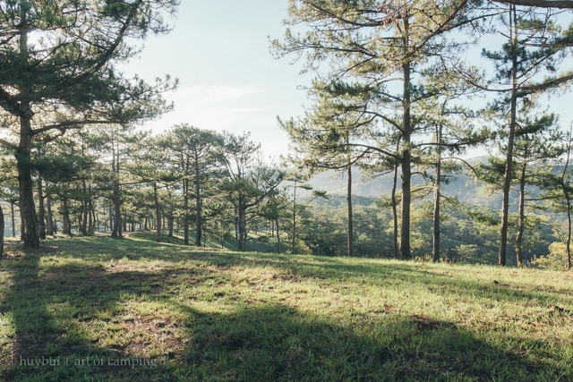 Các gia đình Hà Nội, Sài Gòn muốn đi camping trong phạm vi 300km thì đừng bỏ lỡ loạt địa điểm từ núi tới biển quá đẹp này, sẵn sàng cho kỳ nghỉ 30/4, 1/5 thật chill thôi nào! - Ảnh 31.