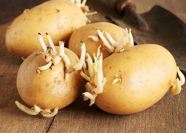 Bác sĩ nhắc nhở: 4 loại rau được mệnh danh là vũ khí hại gan khuyên mọi người ăn càng ít càng tốt - Ảnh 1.