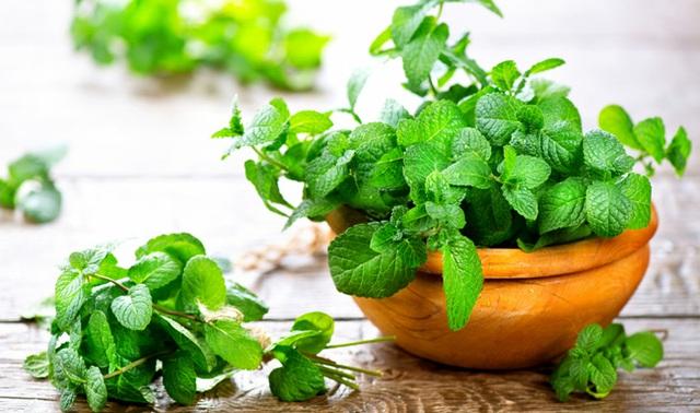 Bất ngờ với những loại thực phẩm gây hôi miệng và biện pháp khắc phục từ các chuyên gia - Ảnh 8.
