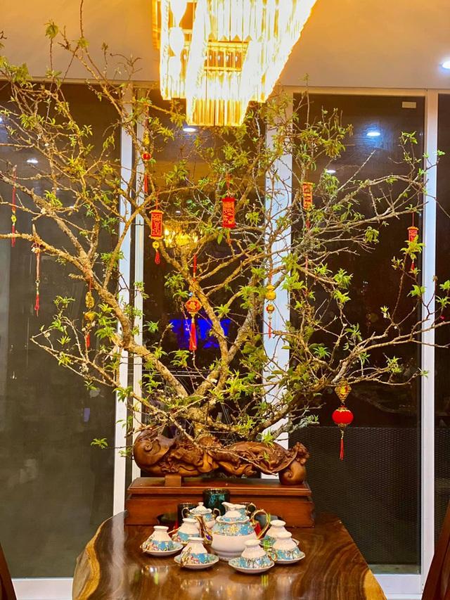 Nhà phố 450m2 của vợ chồng Hà Nội khiến dân tình loá mắt vì như biệt phủ gỗ, có món nặng đến mức 25 người khiêng - Ảnh 6.