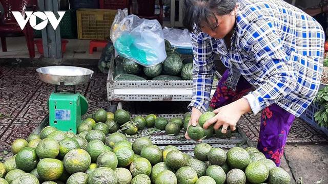 Nắng nóng, giá nhiều loại trái cây tăng cao - Ảnh 1.