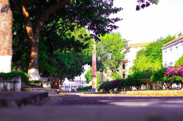 Ngôi trường có khuôn viên đẹp nhất Việt Nam, 4 mùa hoa nở, học phí siêu thấp mà sinh viên đi học ngày nào cũng ngỡ lạc vào resort - Ảnh 3.