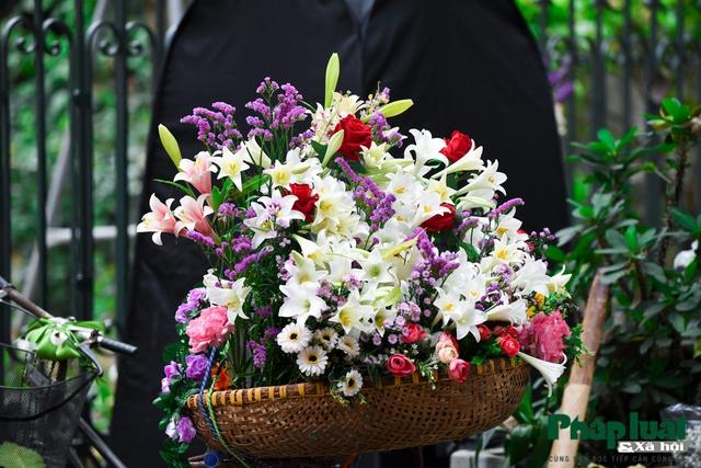 Hà Nội mùa hoa loa kèn về trên phố - Ảnh 7.