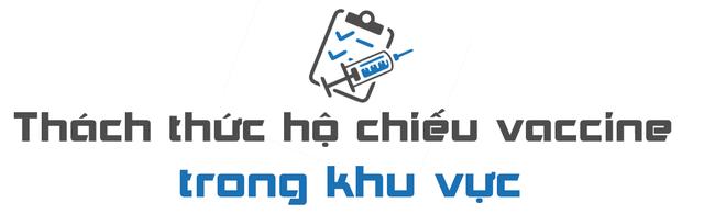 CNA: Liệu hộ chiếu vaccine điện tử có là phao cứu sinh cho ASEAN? - Ảnh 1.